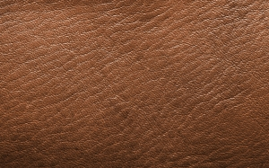 leather, brown, structure, clothing, nature, of course, abstract, texture