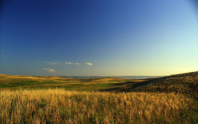 внести ясность очень качественные фото украинская степь производители каждый