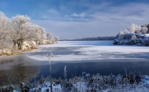 january, winter, nature, morning, winter morning, river, ice, snow