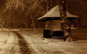 christmas, night, park, season, snow, tree, winter, xmas, cab, booth