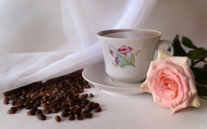 coffee, still life, rose, flower, cup
