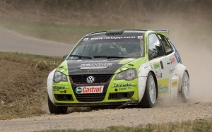 rally, sports, sport, car, volkswagen, volkswagen polo