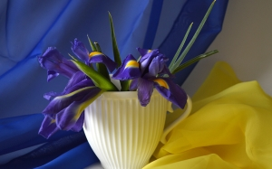bouquet, irises, flower arrangement, flowers