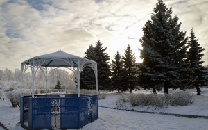 gazebo, city, trees, frost, frost, waterfront, park, landscape, snow, january
