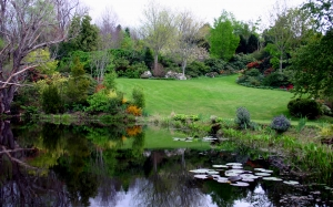 garden, park, pond, lake, trees, flowers, flower, bloom, beds, lawn, hill, lilly, lillies, lillypad