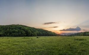 sunset, forest, meadow, nature, mountains, landscape