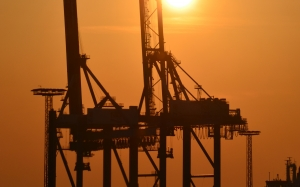 harbor cranes, gantry cranes, industry, port, sunset
