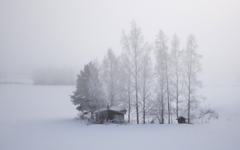 finland, snow, field, cold, cabin, trees, winter, landscape, white