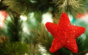 branch, celebration, christmas, decor, decorate, decoration, holiday, merry, noel, ornament, red, shiny, star, tree, winter, xmas