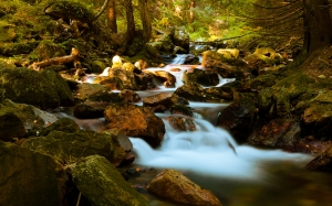 autumn, fall, forest, landscape, woods, nature, river, rock, stones, stream, water, waterfall