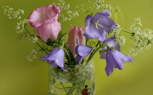 bouquet, bells, composition, summer, flowers, still life