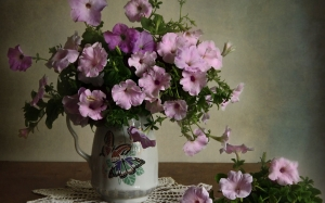 still life, autumn, petunia, nature, plants, flowers