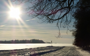 winter, snow, landscape, snowy, tree, trees, wintry, sun, abendstimmung