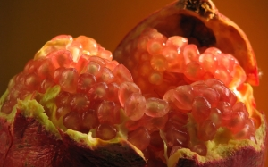 pomegranate, nature gifts, food, cooking, macro, autumn, fruits, berries