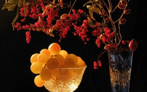 barberry, grape, still life, night, autumn, fruits
