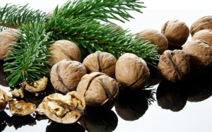 New year, Christmas, Xmas, holidays, food, walnuts
