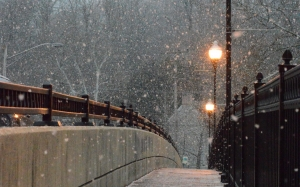 winter, snow, snow, blizzard, bridge, light, street, city