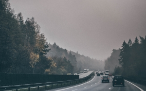 cars, road, traffic, autumn