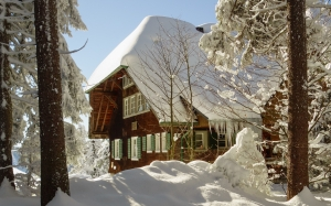 snow, wood, forest, winter, hut, cottage, lodge, nature
