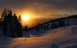 mountains, wintry, landscape, snowy, nature, forest, sunrise, winter, sun