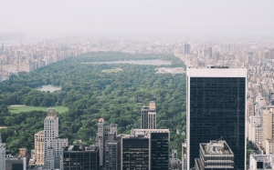 rockefeller center, new york, united states, usa, city, park