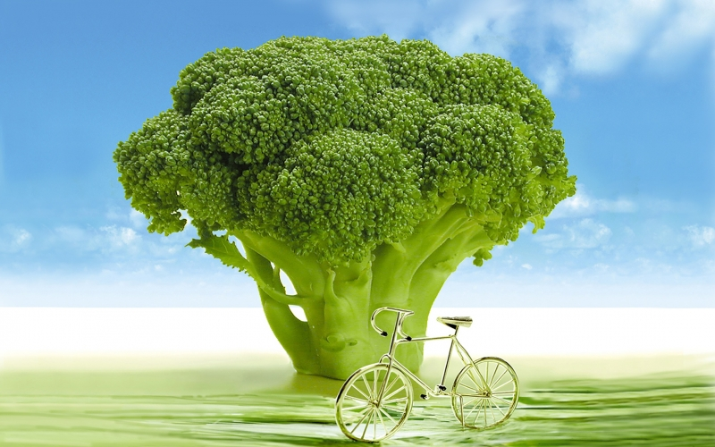 vegetables, broccoli, arboretum, spring, bicycle