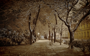 snow, winter, january, evening, park, night, city