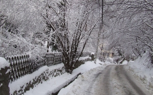 winter, nature, january, snowy, road, bridge