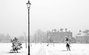 snowing, winter, park, church, flakes, frost, landscape, england, january