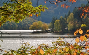 lake, waters, boat house, leaves, autumn, branches, october, fall, landscape, nature, colorful