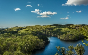 river, lake, water, trees, forest, woods, sunshine, summer, blue sky, nature, landscape