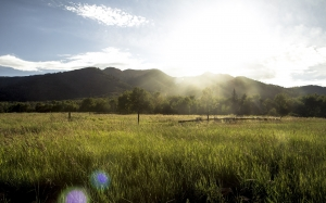 high uintas wilderness, countryside, dawn, field, forest, grass, landscape, meadow, morning, nature, summer, sunrise