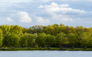 spring, nature, landscape, park, water, lake, trees, river