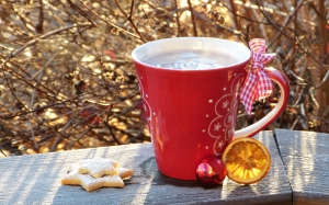 cup, hot chocolate, coffee, drink, cookie, hoarfrost, christmas, advent, winter, december