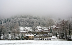 freiburg, snow, robert bosch college, fog, frosty, forest, germany, winter, cold, mountain