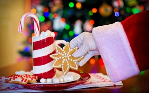 hot chocolate, cocoa, christmas cookie, chocolate, holidays, christmas, festive, tasty, cozy, christmas eve, santa claus, xmas