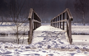 bridge, snow, winter, nature, wood, forest, river
