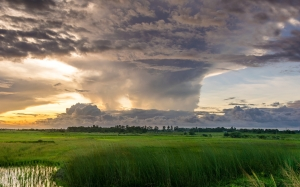 nature, sky, water, clouds, summer, grass, landscape, spring, field, sunset, evening, cloudy
