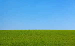 background, blue, clear, day, field, grass, green, landscape, lawn, nature, sky, spring, summer