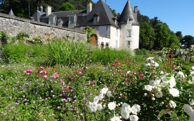 loire valley, castle, france, history, architecture, house, flowers, country