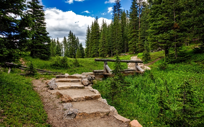 colorado, rocky mountains, national park, landscape, scenic, nature, forest, trees, woods, country, valley, path, trail, meadow, steps