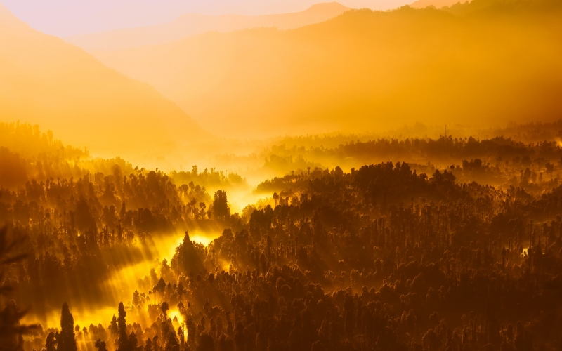 sunrise, morning, sunlight, indonesia, mountains, silhouettes, landscape, scenic, fog, haze, mist, forest, trees, woods, jungle, wilderness, valley, nature