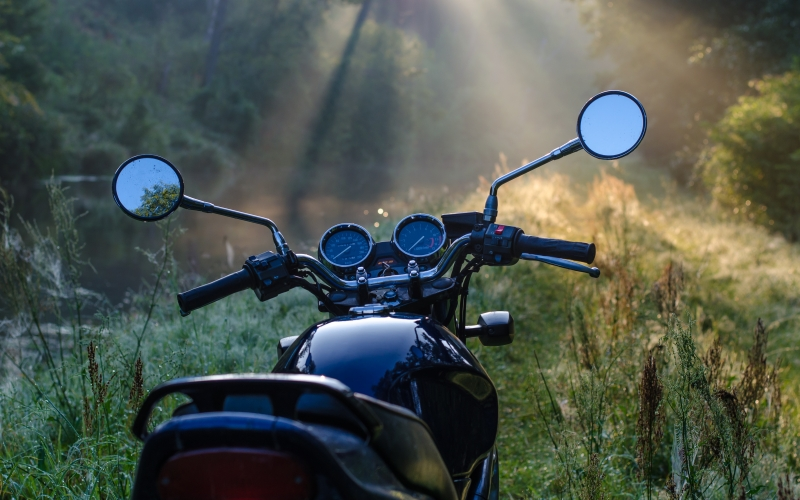 morning, forest, nature, motorbike, bike