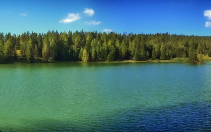 lake felixer, scenic, italy, forest, trees, woods, lake, water, panorama, summer, nature