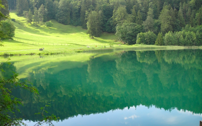 lake, water, summer, valley, hill, forest, trees, reflections, countryside, nature, peaceful, landscape