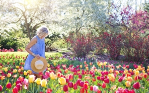 spring, tulips, pretty woman, female, flowers, springtime, nature, happiness, sunny, sunshine, happy, garden, blossoming, blooming