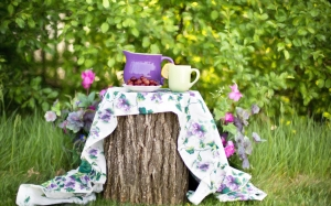 summer, still-life, pitcher, garden, outdoors, tea party, nature, grass