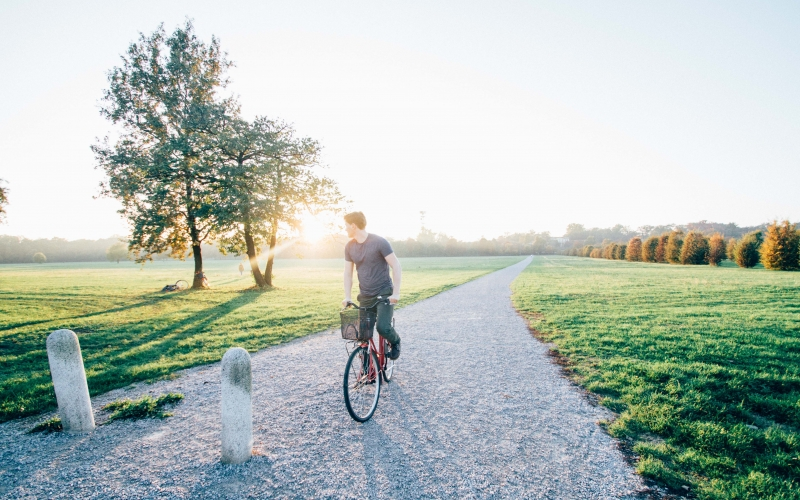 bike, cyclist, daylight, landscape, man, nature, outdoors, park, pathway, person, road, sky, trees, trip, morning,