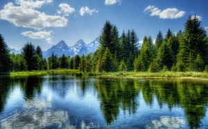 clouds, conifer, daylight, evergreen, forest, idyllic, lake, landscape, mountain, nature, outdoors, placid, reflection, scenic, sky, summer, trees, water, woods
