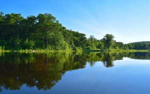 pond, lake, trees, water, reflection, landscape, nature, sky, blue, forest, summer, green, outdoors